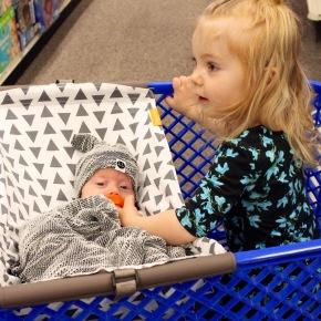 Binxy Baby Shopping CartHammock